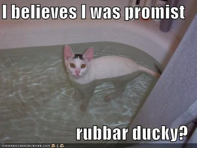 Rubbar Ducky?