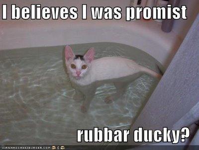 Rubbar Ducky?