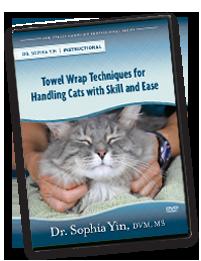 Dr. Yin's helpful DVD