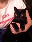 Cat roome!