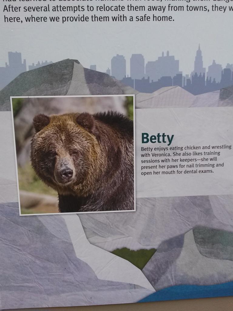 Bettyclawtrims